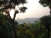 Kata view