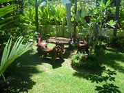 Chillout garden area with teak setting .lots of mature palms