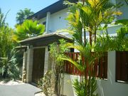Front entrance from the commonland driveway .There is a double gate ,cement parking area and long stand of palms along this two-house shared area.
