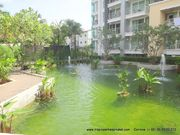 1 bed apart in Kathu, next to QSI, Kajonkiet, big Tesco Lotus,  shared pool, mini mart