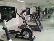a big Gym