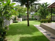 Villa with garden rentals in Phuket