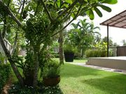 Villa with pool and garden in Phuket