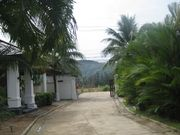 awesome garden villa in bangt ao