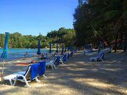 Sun beds on Kamala Beach