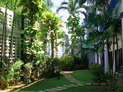 Club Residence gardens