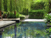Stunning gardens and pool.