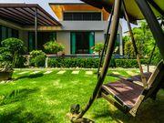Backyard with lawn