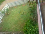 Green inner yard