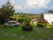 garden view sea view