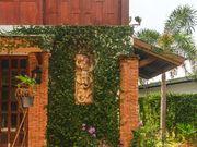 viila Phuket