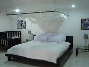 Elysian Master Bedroom