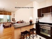 This is the flow kitchen to living room