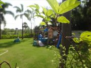 Villa for rent, 2 BR, in Nai Harn, Private Garden, Private Pool