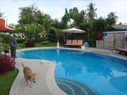 Pool Villa for sale, 6 BR, in Rawai, Beautiful yard, Nice thai style